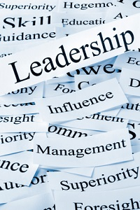 Situational Leadership - Wayne Scherger Business Coaching - Atlanta, GA